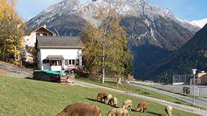 Ferienhaus Sent Engadin Schweiz